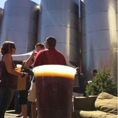 174. Great Divide Brewing – Hibernation Ale Draft